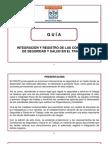 Guia Para La Integracion y Registro de Las Csst