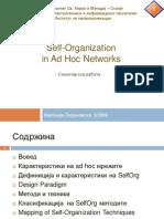 Self Organization