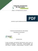 Trabajo de Promocion de La Salud (Autoguardado)