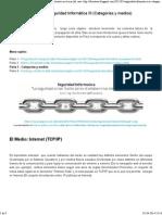 Seguridad Informatica III (Categorías y Medios)