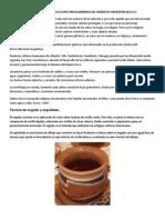 La Cerámica en Las Culturas Precolombinas Del Noroeste Argentino