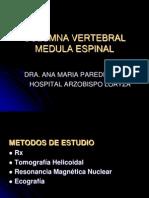 Columna Vertebral Medula Espinal