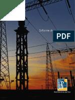Redesur_Informe_Progreso.pdf
