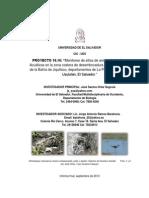 Proyecto Cic Ues 10.16 Informe Final