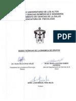 Bases Teoricas Dinamica Grupos