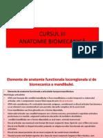 CURS 4 Anatomie Functionala Locoregionala Si de Biomecanica