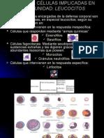 4.- Celulas Implicadas en La Inmunidad