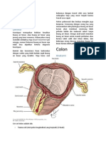 Anatomi Fisiologi Colon Gangguan Defekasi