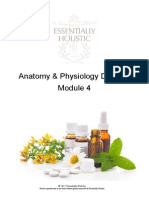 AP Module 4 Course Manual