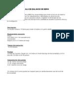 Escala de Berg en PDF