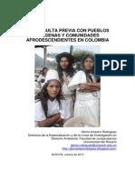 Libroconsulta Previa Gloria Amparo Rodriguez de Universidad Del Rosario