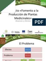 Proyecto Fomento a la Producción de Plantas Medicianles, alcances y efectos.pdf