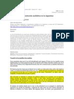 GINIGER Legislacion y Concentracion Mediatica en Argentian