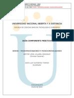 Guia Practica Laboratorio 2014 309696