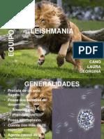 Presentacion de Leishmania