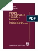 Derecho a La Informacion y Derechos Humanos - PDF
