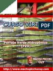ventajas_desventajas_fvh