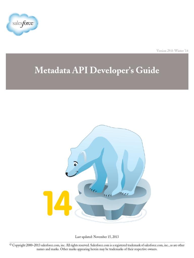 Salesforce meta data API | Application Programming Interface