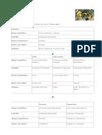 Citros - EMBRAPA.pdf