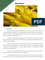 Cultura da Bananeira - EMBRAPA.pdf