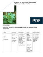 Incenticida natural e caseiro - Fórmulas Caseiras contra os principais intrusos do seu Jardim.pdf