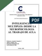 Inteligencias Múltiples Desde La Neuropsicologia Al Trabajo
