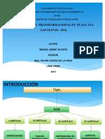 Proyecto Liderazgo Transformacional Marzo 2014