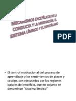 Mecanismos Encefálicos de La Conducta y La Motivación