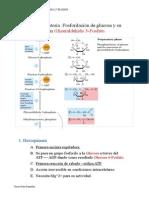 Vias metabólicas.pdf