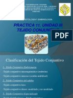 Practica 11 Tejido Conjun