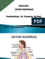 SISTEM RESPIRASI TUGAS NUR ANDRIANA.pptx