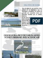 Tour Pico de Garza