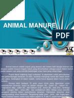 Animal Manure