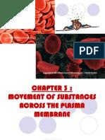 13747342 31 Movement of Substances