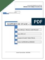 rapport de stage CCA 2014.docx