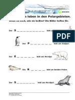 Polar Tiernamen 1