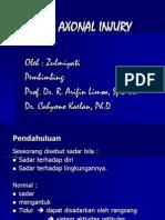 Diffuse Axonal Injury Pp