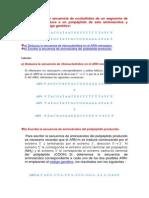 Dada La Siguiente Secuencia de Nucleótidos de Un Segmento de ADN Que Se Traduce a Un Polipéptido de Seis Aminoácidos y Empleando El Código Genético