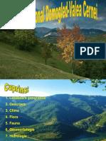 Parcul National Domogled