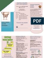 Obesitas (Leaflet)