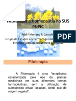 Fitoterapia e Homeopatia No Sus Pnpic (1)