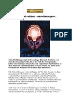 Nahtoderfahrungen.pdf