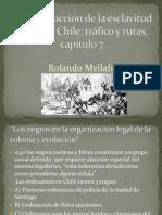 La Introducción de La Esclavitud Negra en Chile, Rolando Mellafe