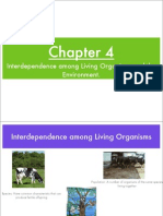 Chapter 4 Interdependence Among Living Things