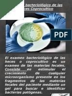 Coprobacteriologico