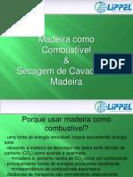 Madeira Como Combustivel e Secagem de Cavacos de Madeira