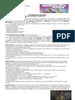 Guia Registros 2014