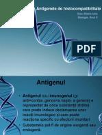 Antigenele de Histocompatibilitate