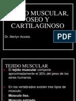 Tejido Muscular, Oseo y Cartilaginoso