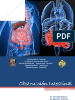 Clinica Quirurgica I. Obstruccion Intestinal Final